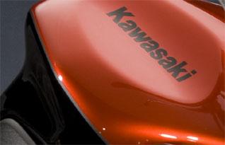Kawasaki Z1000 2009 Tank